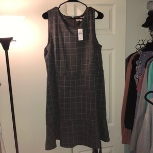 NWT Loft Window Pane Dress